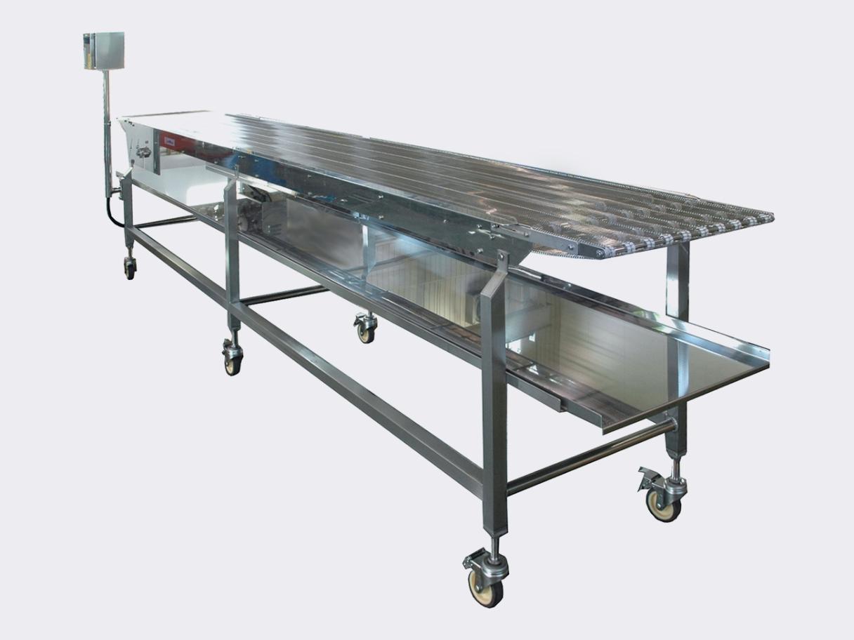 Food conveyor systems